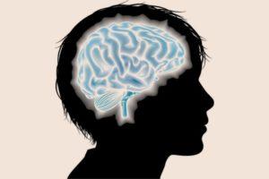 Els efectes de l'abús d'alcohol en el cervell adolescent