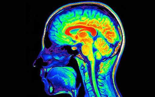 ¿Existe deterioro cognitivo asociado al consumo de drogas?